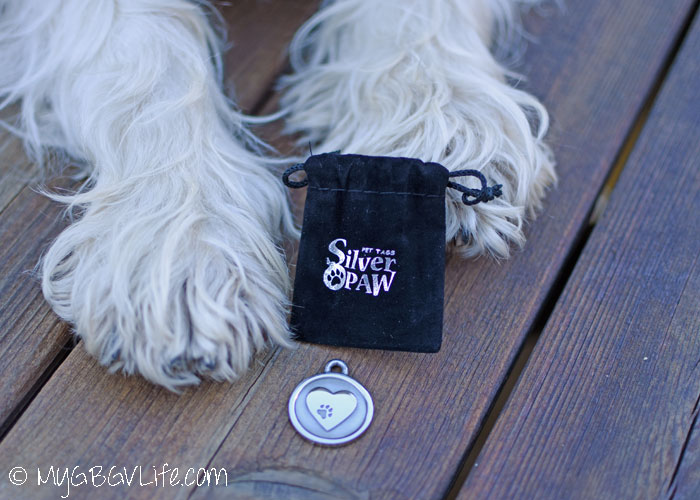 My GBGV Life Madison Gets Her Own Stylish Pet Tag