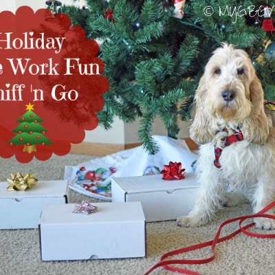 Sniff 'n Go – Holiday Nose Work Fun