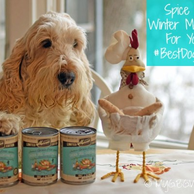 Spice Up Winter Mealtime For Your #BestDogEver
