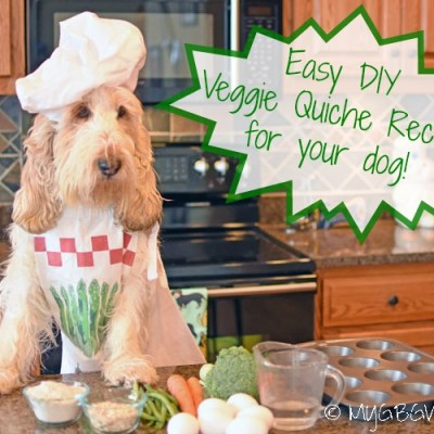 Veggie Quiche – Did You Know Real Dogs Love Quiche?
