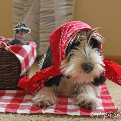 Little Red Riding Hood Gets The Big Bad Wolf