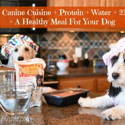 Affordable, Healthy, Homemade Dog Food