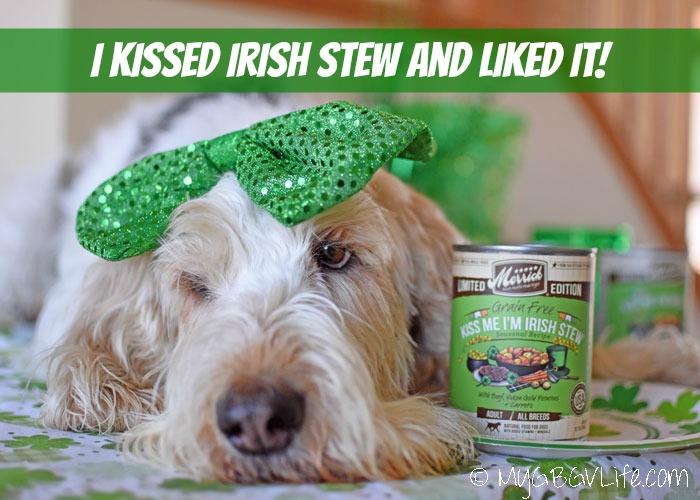 My GBGV Life I Kissed Irish Stew And Liked It!