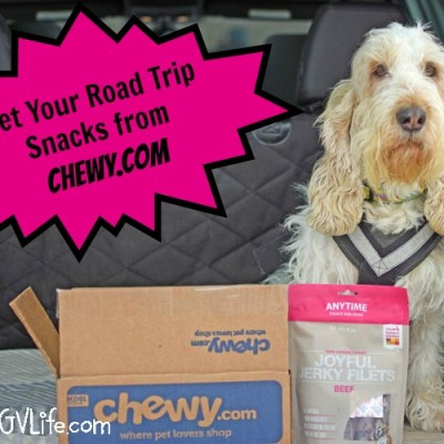 Tasty Road Trip Snacks From Chewy.com #ChewyInfluencer