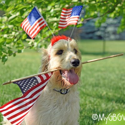 Happy Flag Day 2017 From Bailie