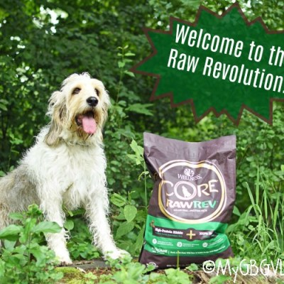 Welcome To The Raw Revolution – Feed Dogs The Diet they Crave!