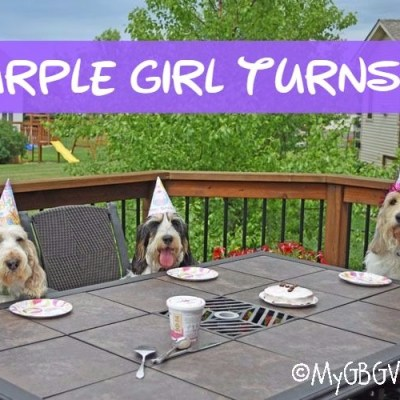 Our Own Purple Girl Turns Four – The Party!