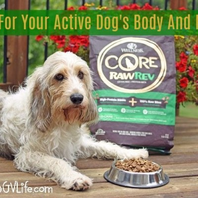 Fuel For Your Active Dog's Body And Mind!