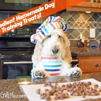 2 Ingredient Homemade Dog Training Treats