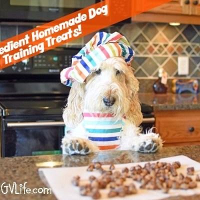 2 Ingredient Homemade Dog Training Treats