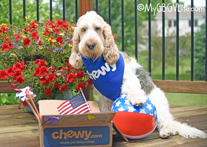 My GBGV Life A Surprise Package For The Holiday Weekend #ChewyInfluencer