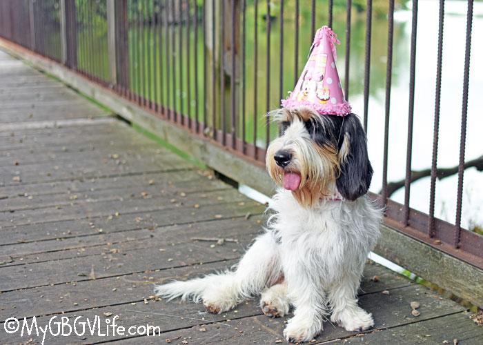 My GBGV Life Turning One Is So Much Fun! Happy Birthday, Madison!