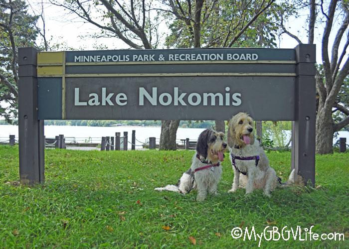 My GBGV Life Lake Nokomis - A Fun Place To Walk Your Dog