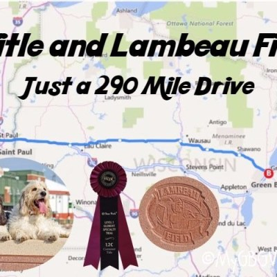 A Title And Lambeau Field – Just A 290 Mile Drive