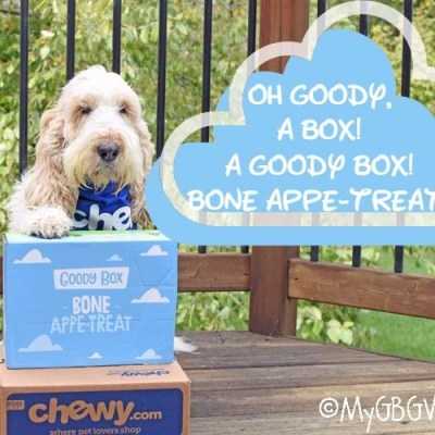 Oh Goody, A Box! A Goody Box! Bone Appe-Treat! #Chewy Influencer