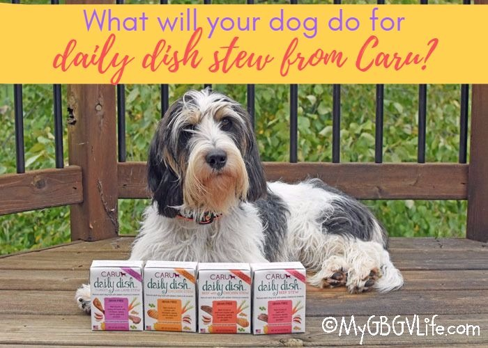 My GBGV Life What Would Your Dog Do For Daily Dish Stew From Caru?