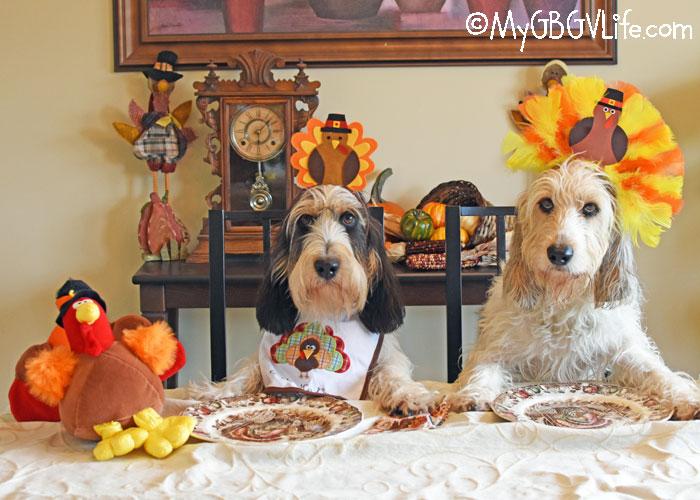 My GBGV Life A Thankful Thanksgiving