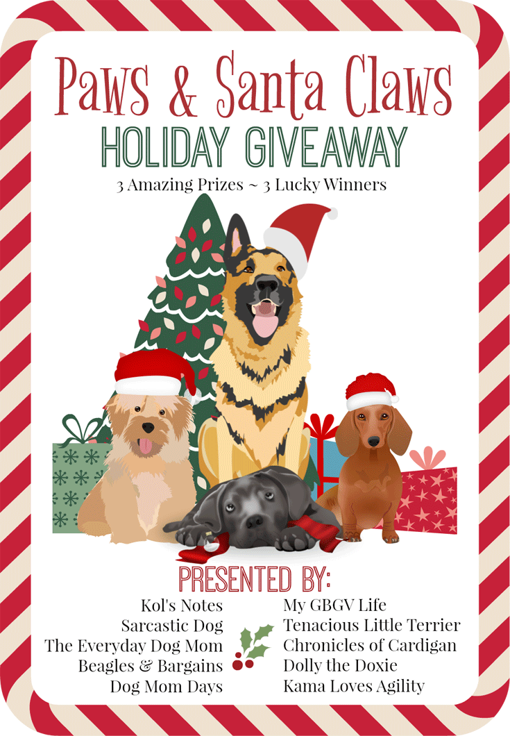 My GBGV Life Let The Big Paws & Santa Claws Holiday Giveaway Begin!
