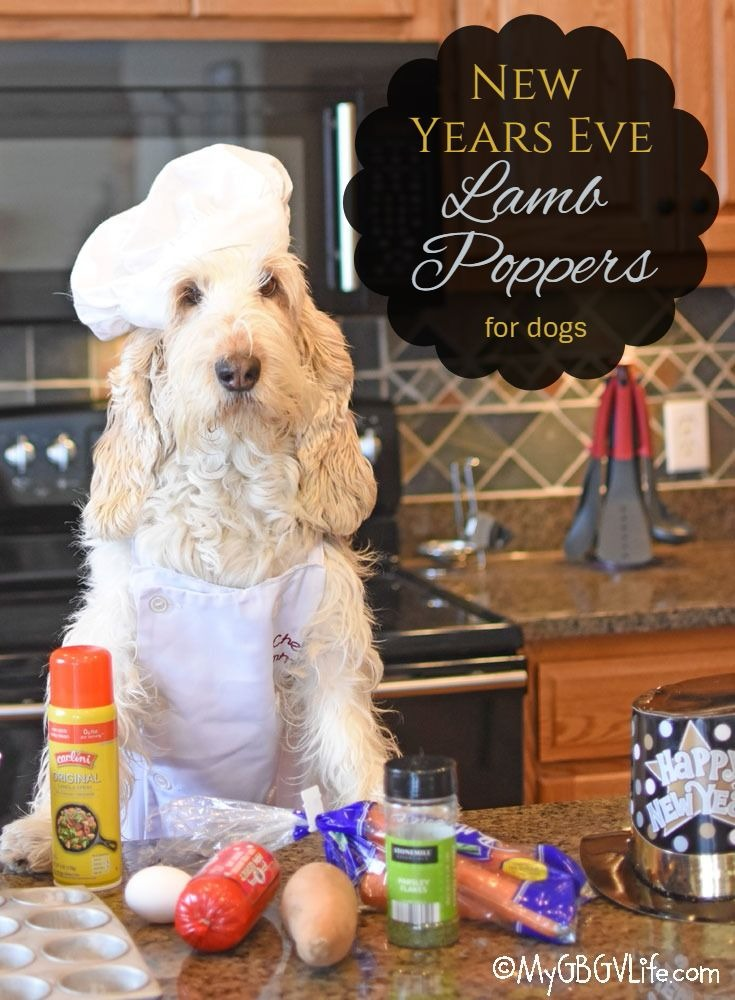 My GBGV Life New Year's Eve Lamb Poppers For Dogs