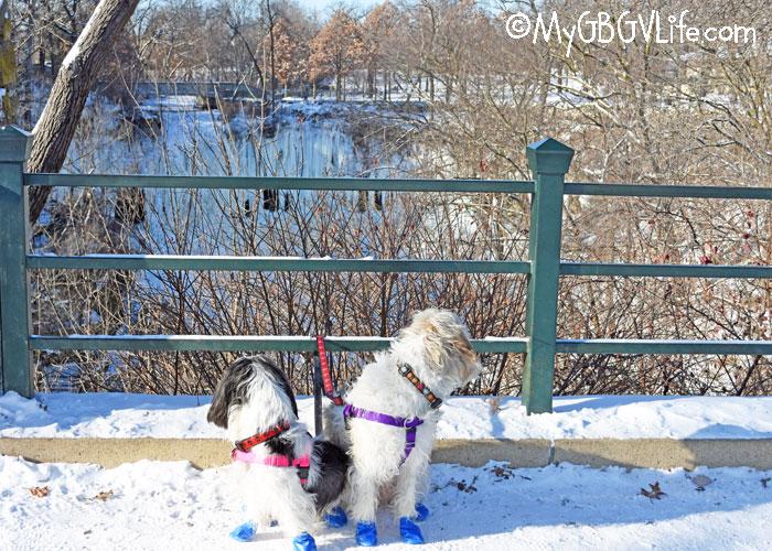My GBGV Life Do Waterfalls Freeze in Minnesota?