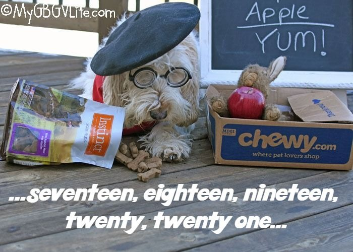 My GBGV Life Rabbit Plus Apple Equals Yum! #ChewyInfluencer