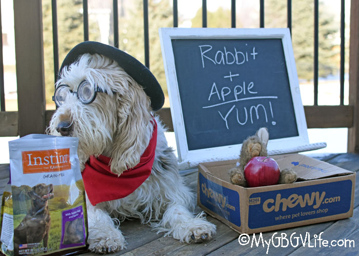 My GBGV Life Rabbit Plus Apple Equals Yum! #ChewyInfluencer