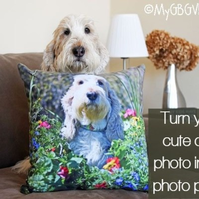 Turn Your Favorite Dog Photo Into An Adorable Photo Pillow