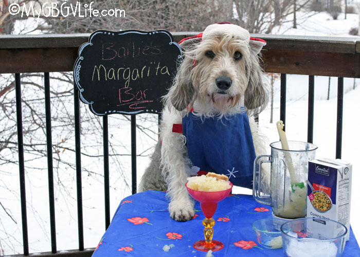 My GBGV Life National Margarita Day - Make Frozen Yellow Snow Margaritas For Dogs