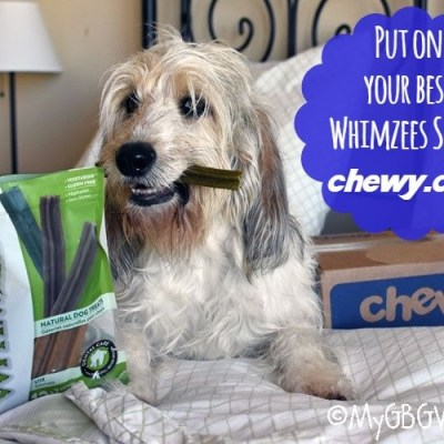 Keep Teeth Healthy With Whimzees Dog Treats #ChewyInfluencer