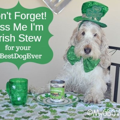Don't Forget The Kiss Me I'm Irish Stew This Year!
