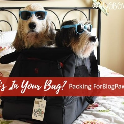 What's In Your Bag? Packing For BlogPaws 2018 #ChewyInfluencer