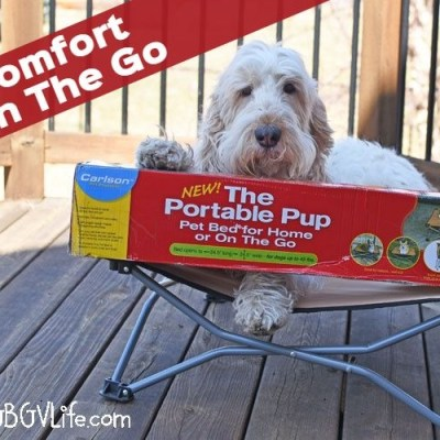 Comfort On The Go With The Portable Pup Dog Cot