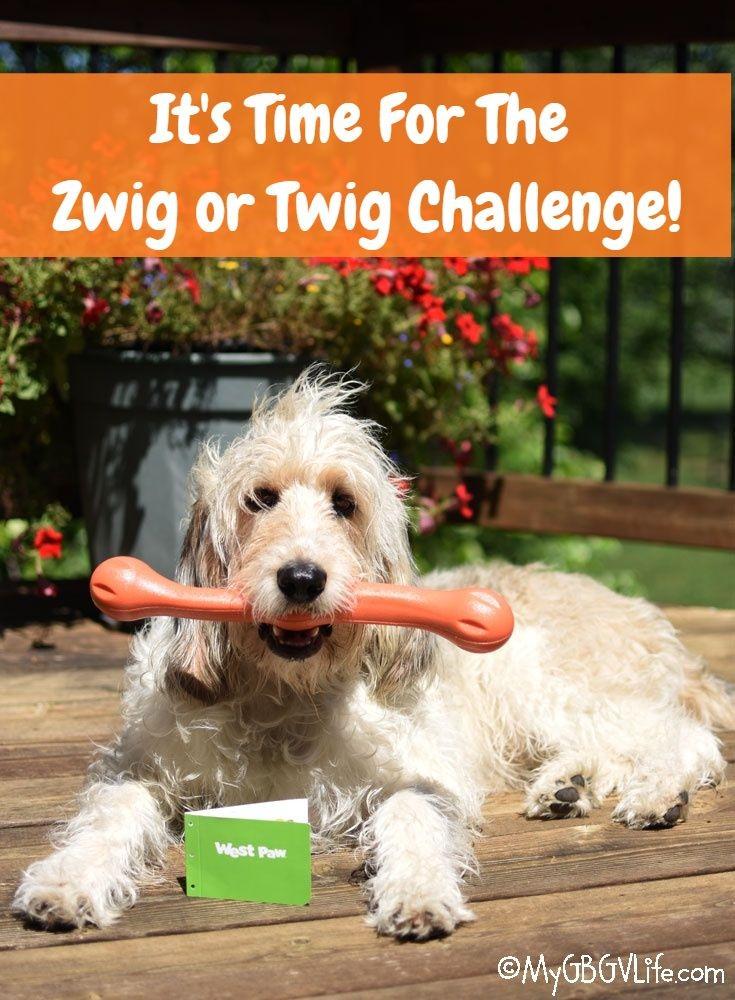 My GBGV Life The Zwig Or Twig Challenge