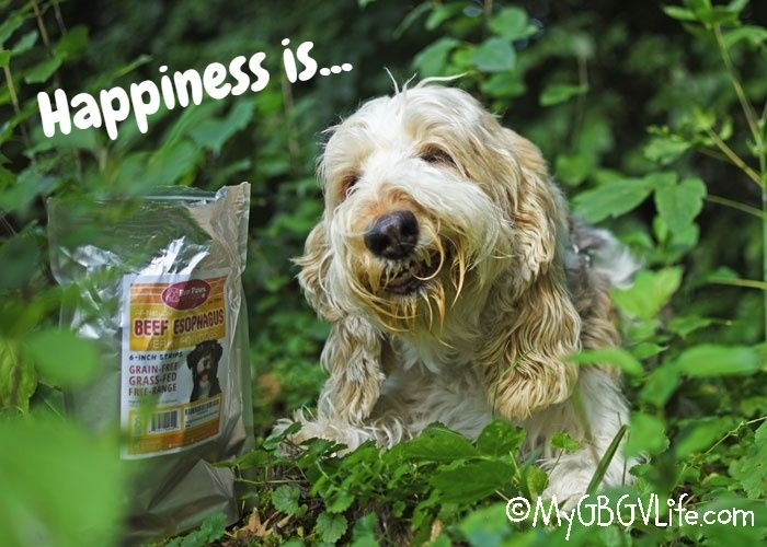 Happiness Is All Natural Beef Esophagus Jerky
