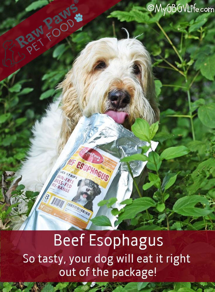 My GBGV Life Happiness Is All Natural Beef Esophagus Jerky