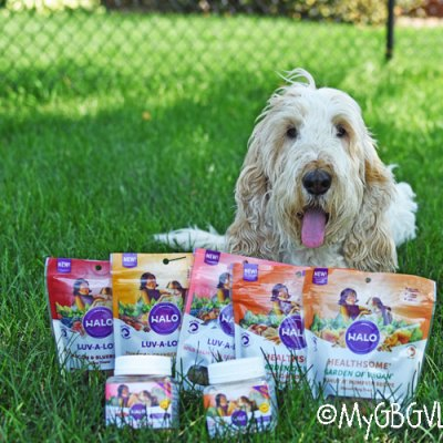New All Natural Dog Treats – Show Your Dog Some Love!