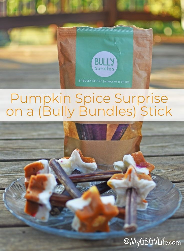 My GBGV Life Pumpkin Spice Surprise On (Bully Bundles) Sticks - Recipe And Giveaway