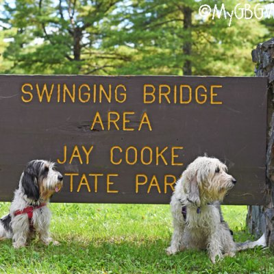 A Short Visit To Jay Cooke State Park