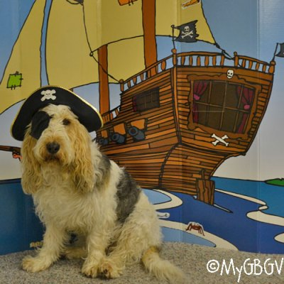 Ahoy Matey, It's Like A Pirate Day!