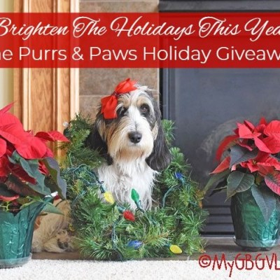 The Purrs & Paws Holiday Giveaway With $500 In Prizes!