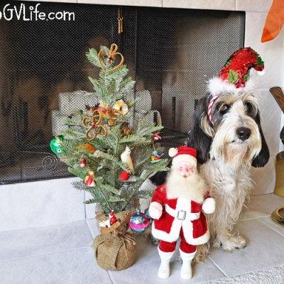 A Really Old Santa And A Tiny Tree