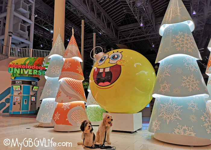 My GBGV Life What? Sponge Bob Round No Pants???