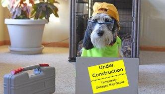 My GBGV Life Under Construction Temporarily
