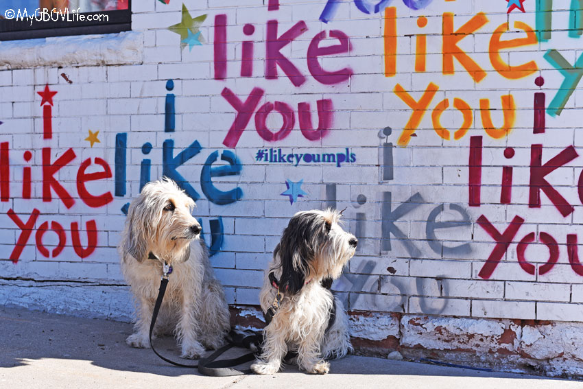 My GBGV Life I Like You Street Art Tour