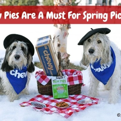 Paw Pies Are A Must For Spring Picnics #ChewyInfluencer