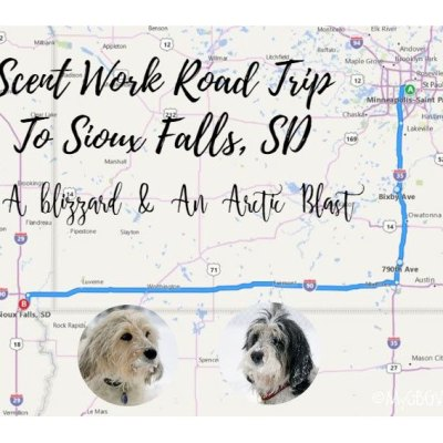 A Real Winter Scent Work Road Trip To Sioux Falls