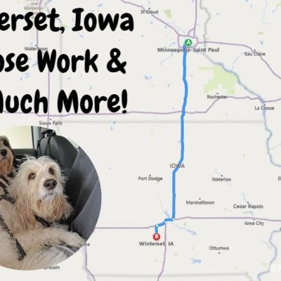 Winterset, Iowa – Nose Work And So Much More