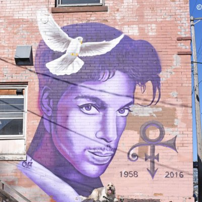 My GBGV Life Purple Girl Celebrates Prince With Another Mural
