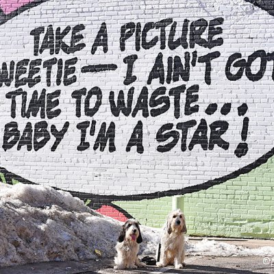 Take A Picture – Another Fun Street Art Mural
