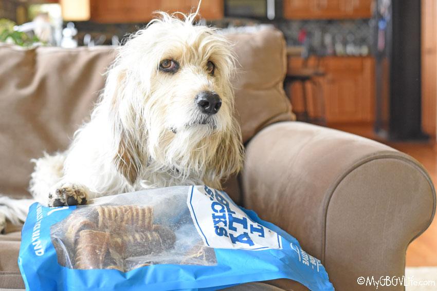 My GBGV Life beef trachea healthy dog chews